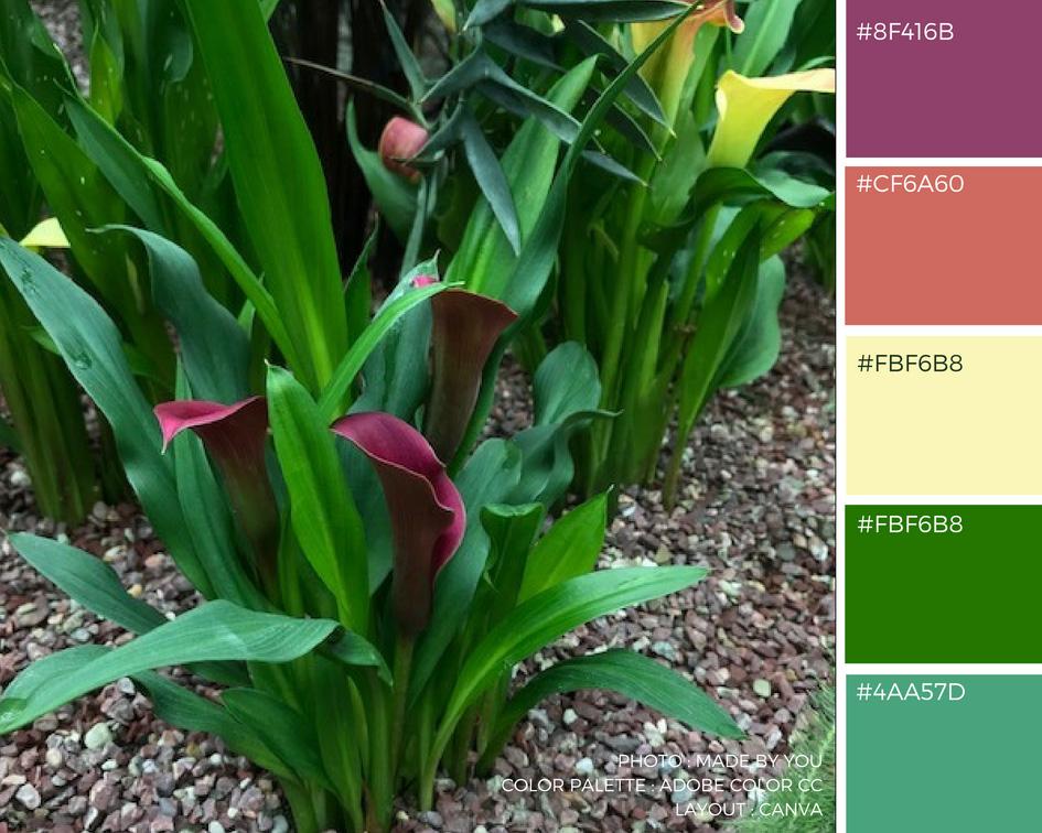 Made By You - Article blog - Palette de couleur - Flower Dome du Gardens By The Bay à Singapour Arum